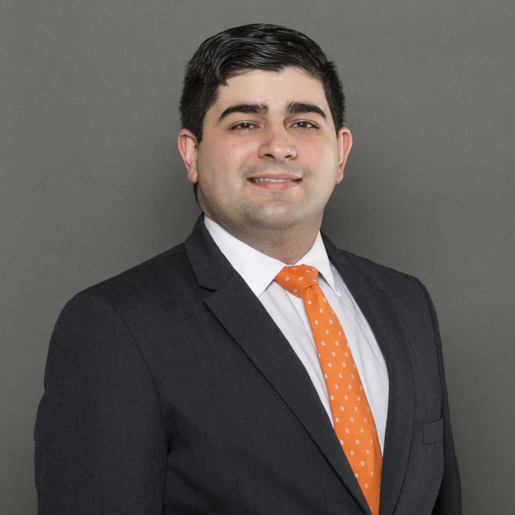 ALBERTO J. E. AÑESES-NEGRÓN